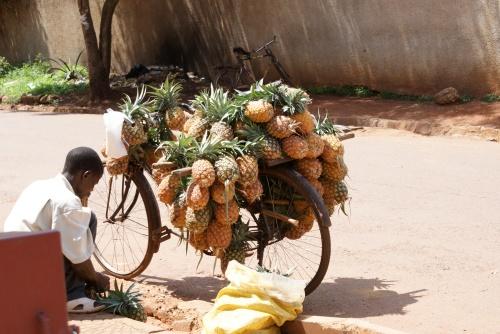 pineapplebike