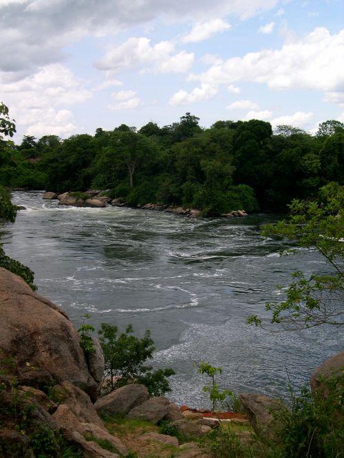 rapids3