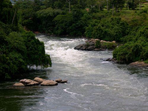 rapids5